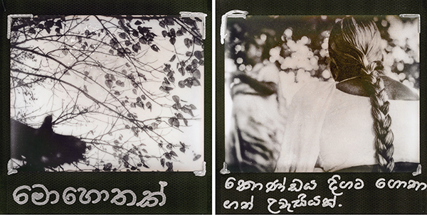 Polaroid-style print of a photographs of a bird flying through branches at a temple in Sri Lanka, and woman visiting the temple (right). A Sri Lankan monk has added script in the native Sinhala that describing the scenes.